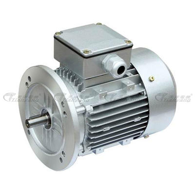 ES Three-phase Asynchronous Motor Variable Speed Motor