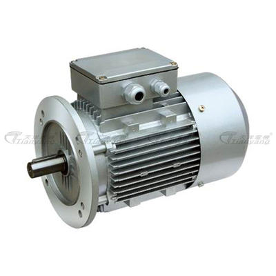 ESP Frequency-variable Adjusting Speed 3-phase Asynchronous Motor